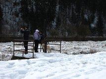 Kysuce, ľadová povodeň, sneh, kalamita