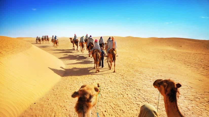 namíbia, púšť, ťavy, ťava, karavána