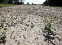 sucho, pôda, zem