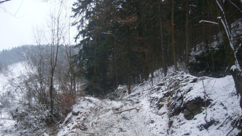 les, hodruša-hámre, lesník
