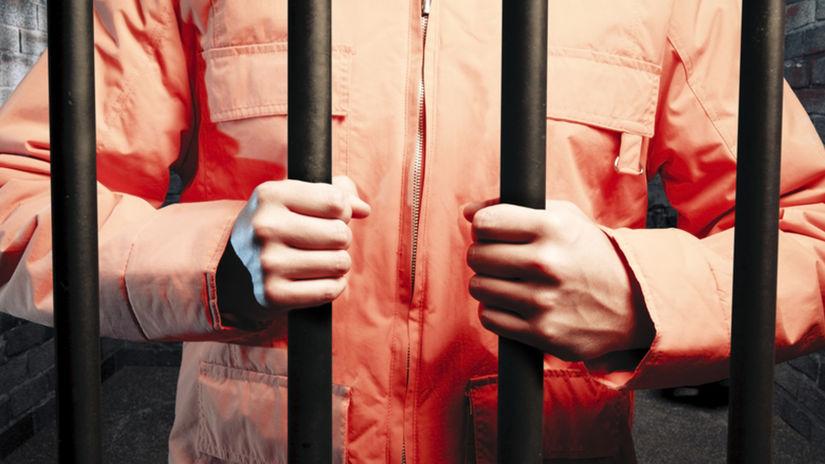 väzeň, väzenie, väznica, mreže