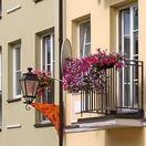 Bývanie, satelit, balkón, kvety, byt, dom
