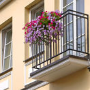 Dom, byt, kvety, balkón, bývanie, reality