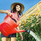 Zavlažovanie, závlaha, krhla, polievanie, bývanie, záhrada