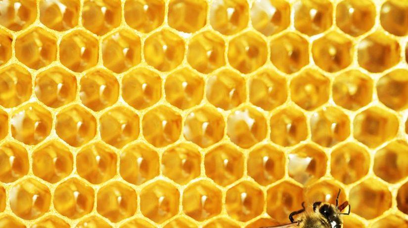 včely, plast, úľ, med