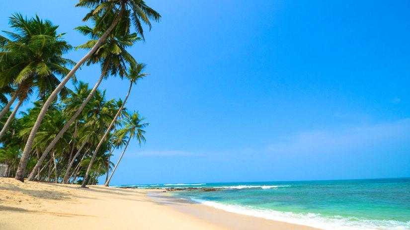 piesok, pláž, more, palma, dovolenka, leto,...