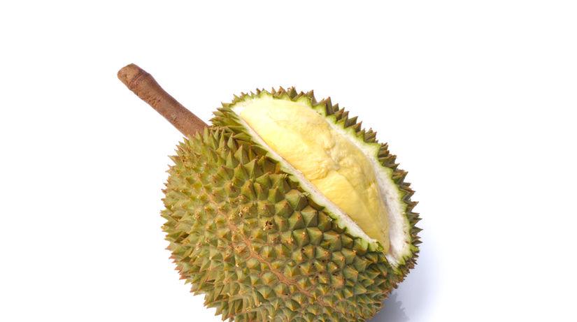 detailny durian