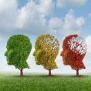 strom, hlava, mozog, duševná choroba, demencia, Alzheimer