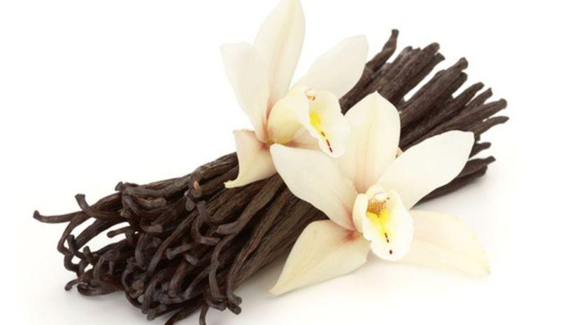 vanilka, korenie, dezert
