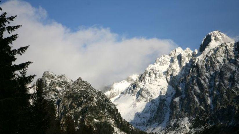 Vysoké Tatry, hory, les