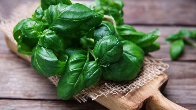 bazalka, bylinky, talianska kuchyňa