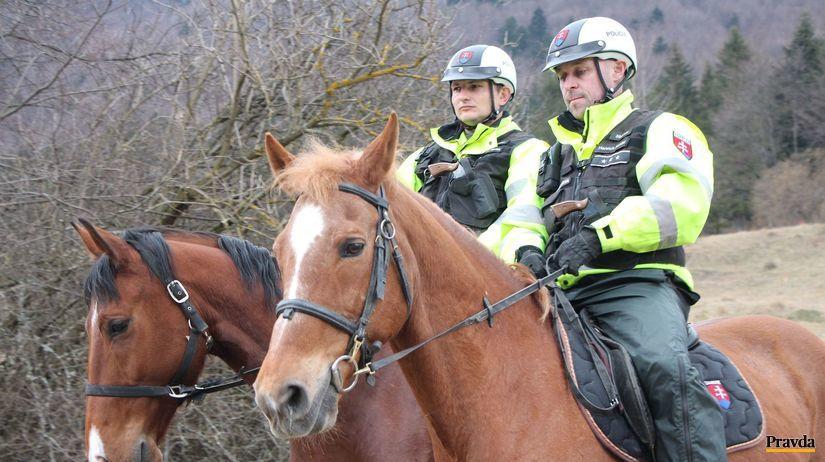 kone, jazdná polícia, Vrátna dolina, Terchová