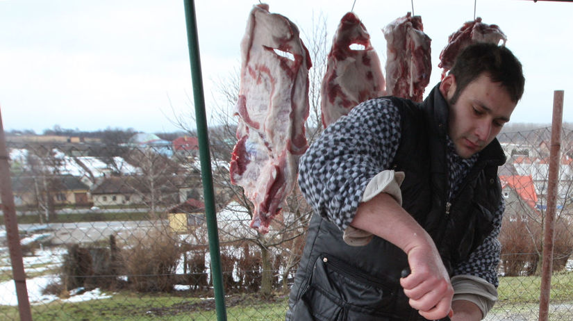 zabíjačka, prasa, mäso,