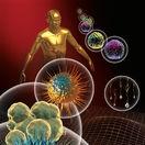 rakovina, nádor, bunky