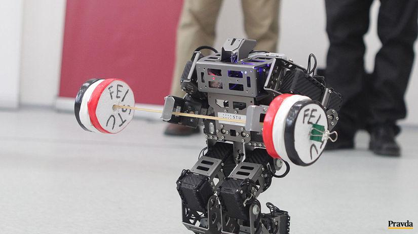 robot, Narodné centrum robotiky,