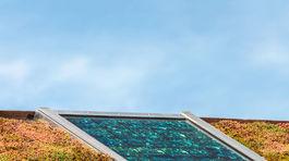 zelená strecha, bývanie
