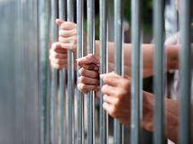 väzenie, väzni, mreže