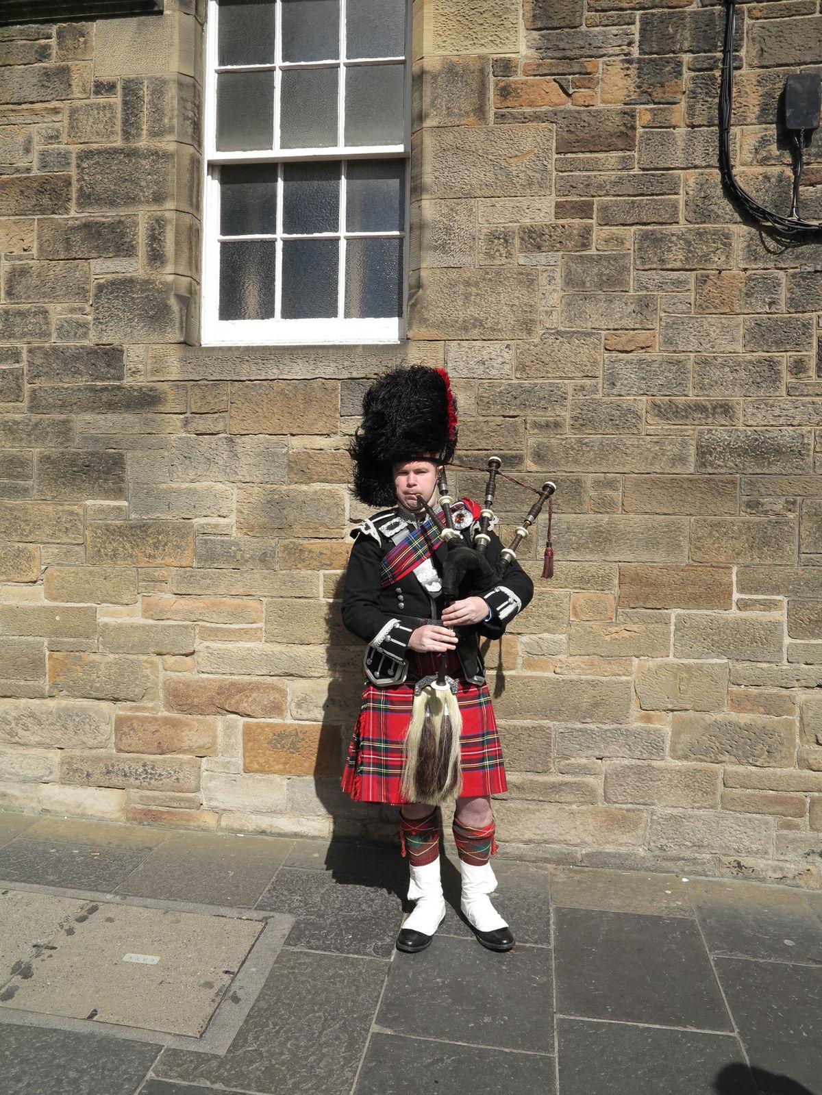 Viete, aké nezvyčajné zviera si za svoje národné zvolili Škóti?