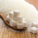 sacharidy, cukry, jednoduché sacharidy