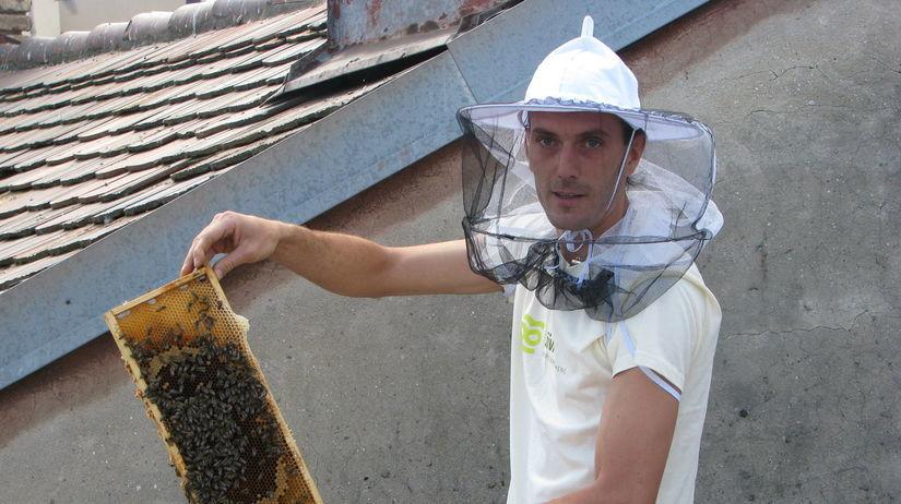 Včely, úle, Bratislava, stará tržnica, Živica,