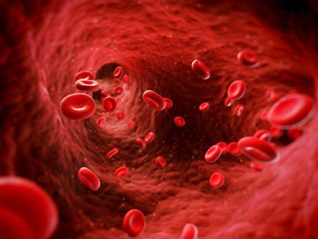 Výsledek obrázku pro červené krvinky
