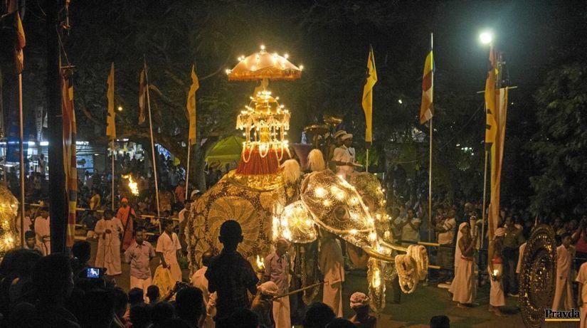 slon, Srí Lanka