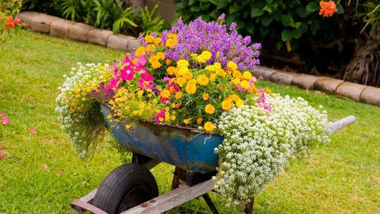Kalendár záhradkára: Čo urobiť v apríli?
