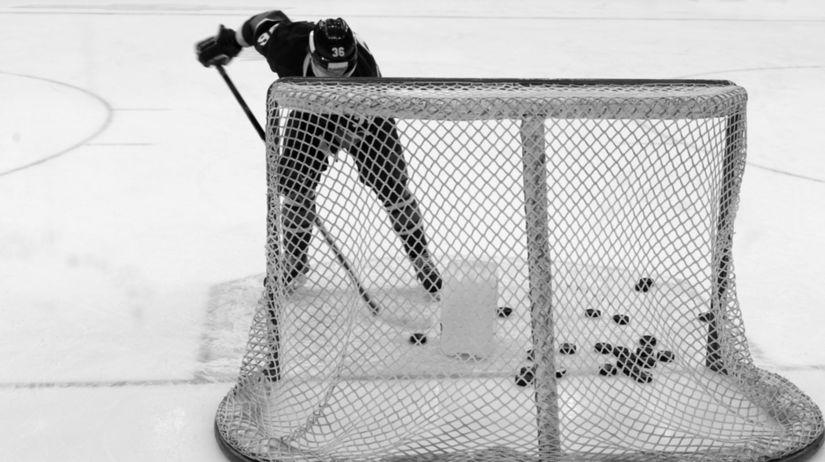 Hokejista, puk, bránka