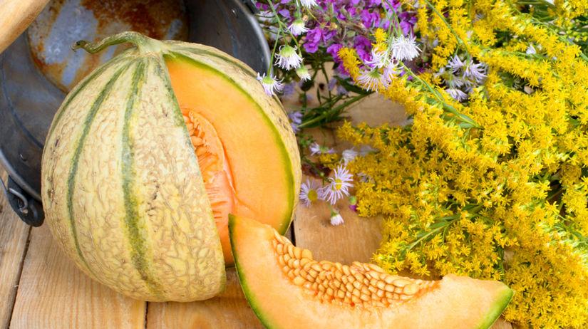 melón, dyňa, zelenina, výživa