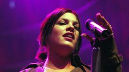 Rok 2004: Speváčka Pink
