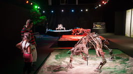 Dinosaurium, Incheba, výstava, dinosauri, dinosaurus