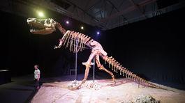 Dinosaury, Dinosaurium, Incheba, výstava,
