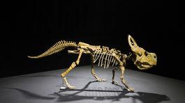 výstava, dinosaury, incheba