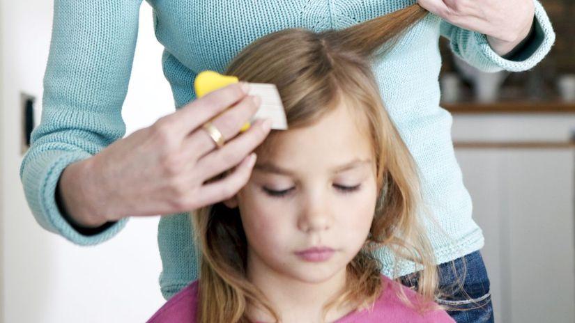 voš, vši, česanie, vlasy, dieťa