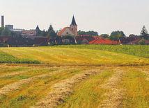 pole, vidiek, dedina