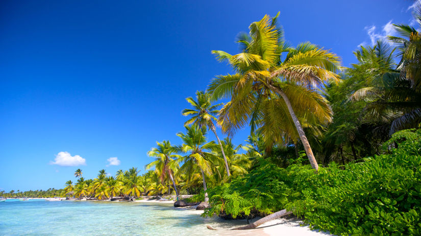 Karibik, Dominikánska republika, more, palmy, pláž