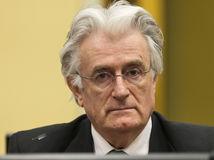 Radovan Karadžič, súd, Haag, Bosna a Hercegovina, Juhoslávia