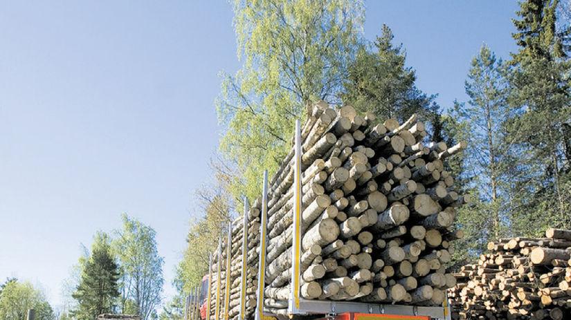 drevo, les, ťažba