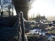 zima, sneh, mráz, počasie, Francúzsko, pasienky