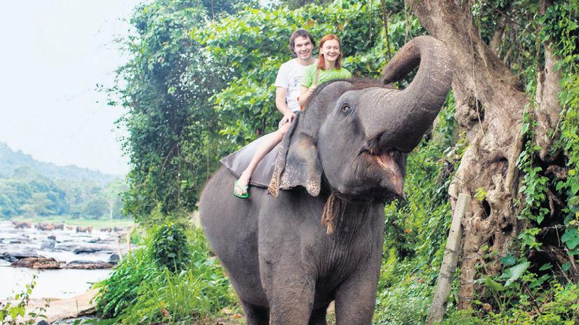 dovolenka, exotika, slon, prales, turisti,