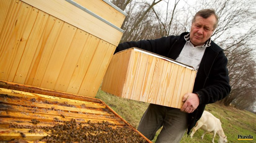 včely, úle, úľ, včelár, skanzen