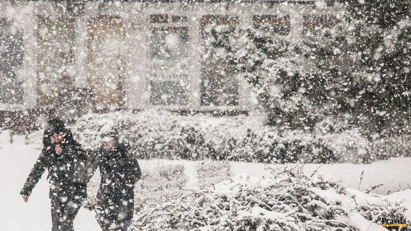 sneh, zima, mráz, kalamita, sneženie, ľad,...