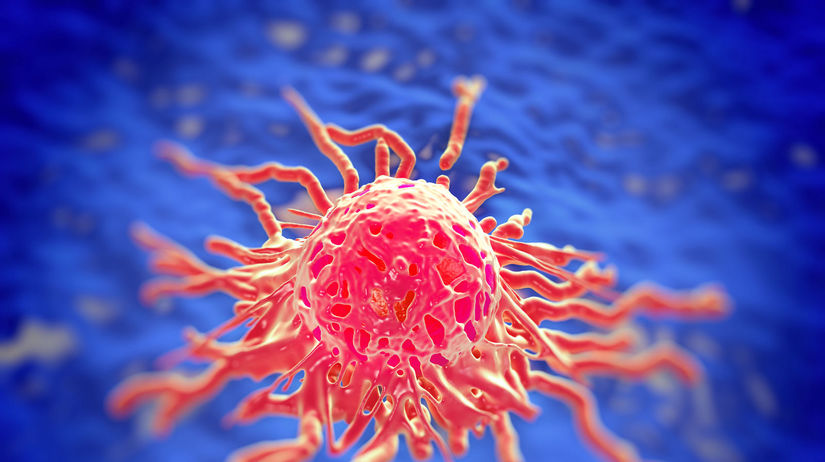 karcinóm, pankreas, rakovina