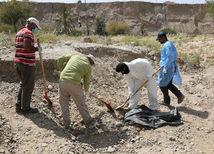 Irak, masový hrob