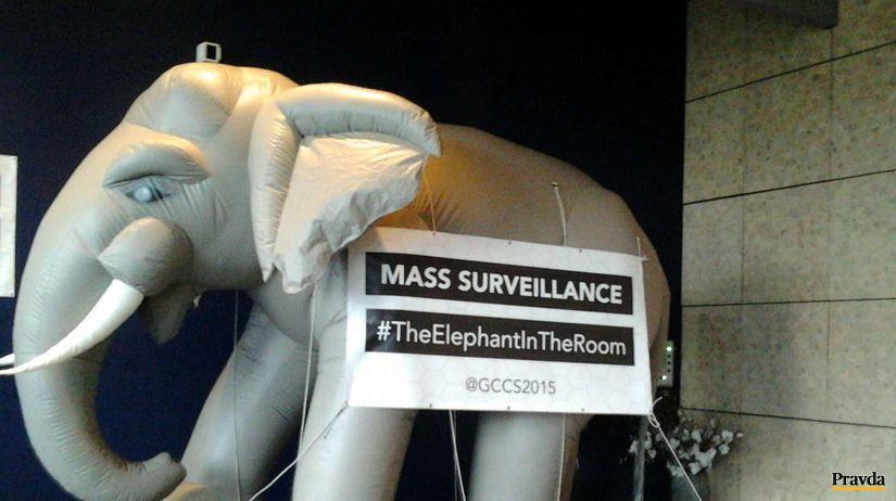 slon, sledovanie