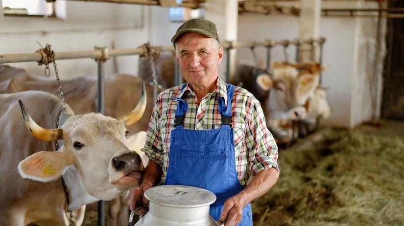 pracujúci, dôchodca, dôchodok, krava, mlieko,...