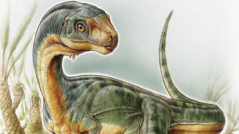 dinosaurus, tyranosaurus, ilustrácia dinosaura