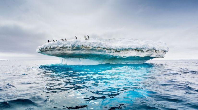 Antarktída, tučniaky, ľadovec, ľad, zima, sneh,...
