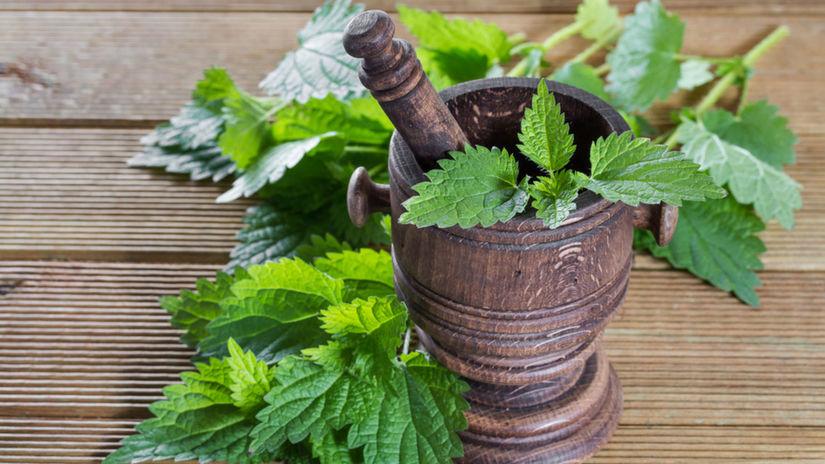 žihľava, bylinky, detoxikácia