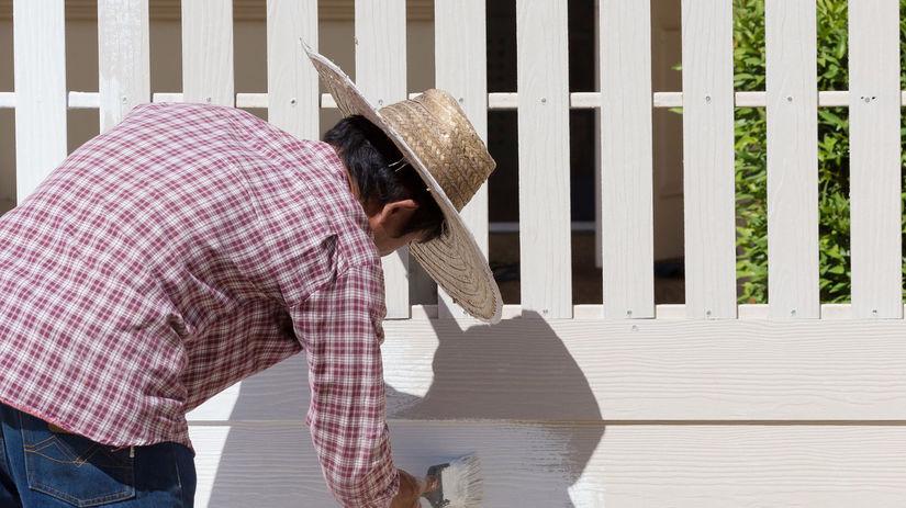 plot, dom, bývanie, maľovanie